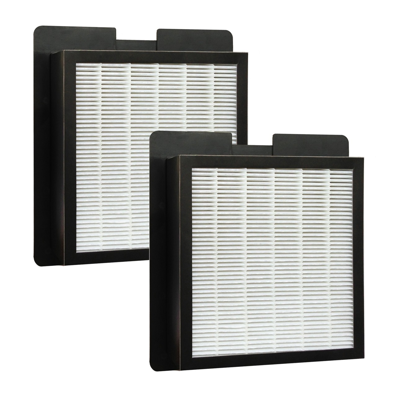 2 hepa filters for fresh air by ecoquest and xl 15 by